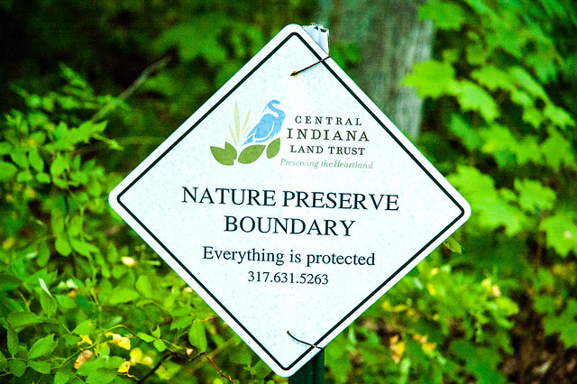 John Sunman's Woods Nature Preserve - August 16, 2014