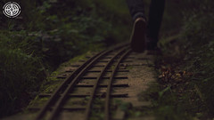 Tracks (-ASD-) Tags: camera old city red abstract color colour abandoned church overgrown colors train miniature rust colours small rustic roots rail railway cc covered