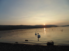 Loch Lomond Sunset (hollyjennys) Tags: sunset beach scotland balloch lochlomond