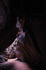 240a (markbyzewski) Tags: arizona page ugly slotcanyon logjam buckskingulch