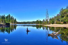Spider Lake BC Canada (Yannick-R) Tags: pictures lake canada nature landscape photography spider photo photographer bc picture columbia british yannick rivoire