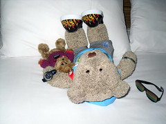 """Settling in"" (pefkosmad) Tags: bear vacation holiday ted sussex hotel friend break teddy sainsburys pal mate tourguide littleted gobshite travellingbear tedricstudmuffin tedandhislittlepal"