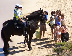 Police horses at the beach (Val in Sydney) Tags: horse beach animal cheval sydney police australia nsw plage coogee australie