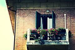 il balcone dell'ultimo piano (margherita g [mostly OFF]) Tags: building italia balcony edificio bologna editing balcon balcn faade balcone facciata lastfloor ultimopiano derniertage
