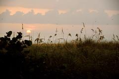 Gulf Sunset (ap0013) Tags: sunset anna gulfofmexico america mexico island gulf florida maria fl fla annamariaisland gulfsunset