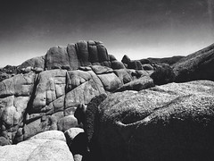 The Rocks (variation) (tycampbe) Tags: california park camera new travel light usa white abstract black tree art nature contrast digital mono noir shadows phone joshua pov perspective atmosphere national commercial environment popular textured creations iphone constant 500px iphoneography ifttt mextures