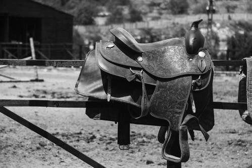 Saddle your Horse