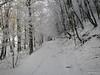 IMG_1510 (BiciNatura) Tags: bicinatura mountain bike mtb monte aspra all snow