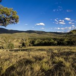 Tinderry Mountains National Park thumbnail