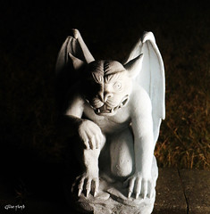 Gargoyle. (Gillian Floyd Photography) Tags: gargoyle night strobist flash speedlite