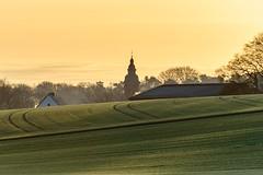 Lavesum am Morgen (webpinsel) Tags: frühmorgens frühling halternamsee landschaft lavesum münsterland natur