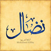 نضال (mohamed elfiky 22) Tags: نضال