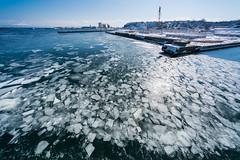網走の海 04 (tomomega) Tags: 網走 北海道 流氷 海 sea driftice