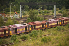 EWS 60's Toton 18/06/2014 (Flash_3939) Tags: june depot withdrawn decommissioned 2014 stored toton class60 60027 60042 60037 60018 60097