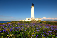 Hyskeir Lighthouse and bluebells, The Minch (iancowe) Tags: flowers sea lighthouse flower bluebells island scotland scottish atlantic inner stevenson rum minch bluebell canna hebrides northernlighthouseboard nlb hyskeir
