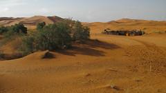Erg Chebbi (Meknès-Tafilalet Region, Morocco) (courthouselover) Tags: morocco maroc almaghrib meknèstafilalet meknèstafilaletregion régiondumeknèstafilalet ergchebbi landscapes المغرب africa northafrica