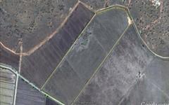 Farm 2038 Hulong Road, Whitton NSW