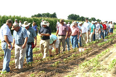 agents in line (UGA College of Ag & Environmental Sciences - OCCS) Tags: training cotton extension ponder agents personnel