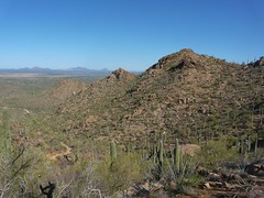 Hugh Norris Trail #5 (jb10okie) Tags: park travel vacation arizona usa america spring nps trails saguaro nationalparks saguaronationalpark 2013 westdistrict