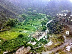 10505500_244681939064358_3262026943493605597_n (Mohamed1403) Tags: old heritage nature coffee design quality south country kind architect arab yemen cultivation                yafea    aziaacom