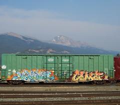 AFEX, COMA (YardJock) Tags: railroad graffiti spraypaint boxcar piece freighttrain cfc benching paintedsteel boxcarart benchreport