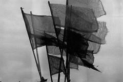 les drapeaux (asketoner) Tags: winter sea france beach wind flags salty normandie varengeville