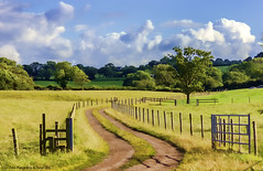 A Summer Walk (Explored) (Glyn Owen Photography & Image-Art) Tags: uk summer england river landscape town gate long track cheshire market walk weaver breeze fenceline frodsham