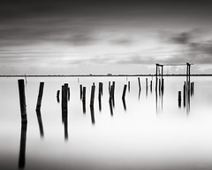 Palm Bay - Day 3 - #6 (josesuro) Tags: bw film sunrise landscapes florida fineart 4x5 largeformat palmbay 2014 acros100 floridaeastcoast ebonysv45ti jaspcphotography