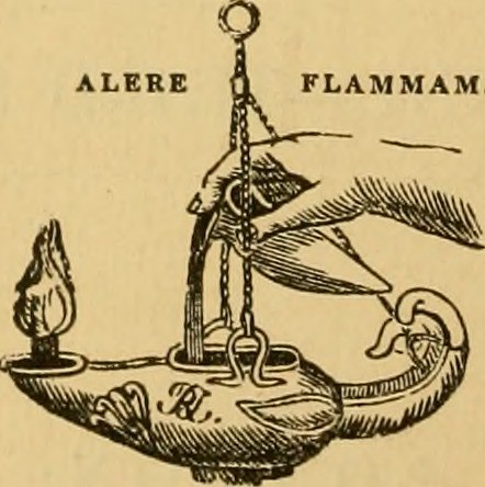 Image from page 7 of
