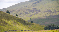 """Glen Shee • <a style=""""font-size:0.8em;"""" href=""""http://www.flickr.com/photos/53908815@N02/14785790831/"""" target=""""_blank"""">View on Flickr</a>"""