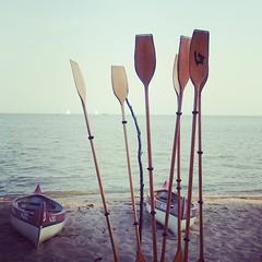 resting paddles (mdanys) Tags: summer canoe nida lithuania paddles curonian danys nidden mdanys