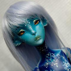 Ceecee the only blue one (Sakura-Streifchen) Tags: ooak ombre bjd artistdoll blueskin sweetypie lillycat ebjd cerisedolls artistbjd amahtalafaceups