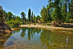 _DSC7206 (J.A.G. Gallego) Tags: río guadalquivir sony jaen sierradecazorla a99 darktable tamron2470usd