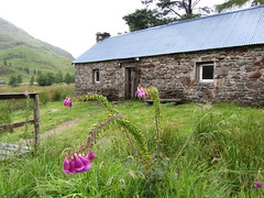 Corry Hully bothy - thanks to the generous estate for keeping it so well