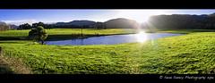 Gunns Plains Tas (Sean Savery Photography) Tags: panorama green dam australia panasonic tasmania fields afternoonsun gunnsplains dmcgf1 olympus17mmf18