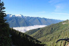 Can't get enough of fog in the valley (daveynin) Tags: blue sky fog nps clear olympic overlook highdivide deaftalent deafoutsidetalent deafoutdoortalent