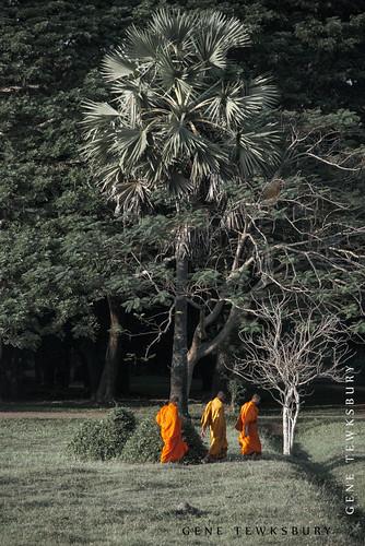 Cambodia__1579_11-28-10-tewksbury