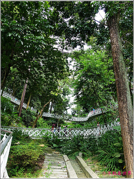嘉義竹崎公園 (7).JPG