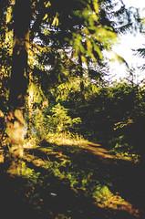 DSC_4914 (DeepLovePhotography) Tags: select deeplovephotography seanhelmn