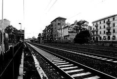 Percorsi esistenziali: Monza-Milano (seil6fosse9) Tags: bw train bn cocacola railways treno fuga ferrovia sestosangiovanni bluvertigo percorsiesistenzialimonzamilano