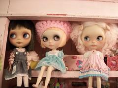 Trio of Cutie Pies........