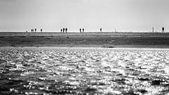 Between the waters (Maike B) Tags: priel flut wattenmeer watt stpeterording nordsee windig stürmisch stormy northsea waddensea