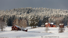 20170222100867 (koppomcolors) Tags: koppomcolors winter vinter snö snow värmland varmland sweden sverige scandinavia