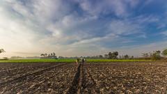 உழந்தும் உழவே தலை ! (Shanmuga Nathan.) Tags: cwc chennai nammachennai mychennai chennaiweekendclickers shan shanmuganathanphotography capturemachine tamilnadu farmer farmland people village twop ngc natgeo nationalgeographic canon 600d chengalpet
