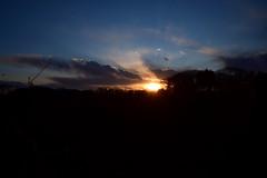 20170308_015_2 (まさちゃん) Tags: 富士山 夕陽 空 雲 夕暮れ時 シルエット クレーン 鳥