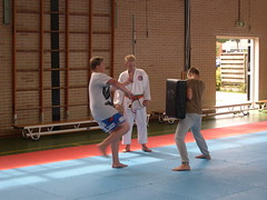 "zomerspelen 2013 karate clinic • <a style=""font-size:0.8em;"" href=""http://www.flickr.com/photos/125345099@N08/14220613438/"" target=""_blank"">View on Flickr</a>"
