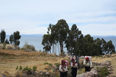DSCF4281 (old_O) Tags: travel lake peru titicaca traditional carry