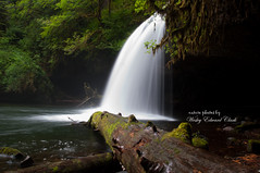 BC 5_edited-1 (Photos by Wesley Edward Clark) Tags: oregon silverton waterfalls scottsmills buttecreekfalls