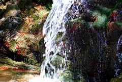 Cascata de La Trappola (Renzo Ferrante) Tags: wild water nikon country tuscany monte toscana acqua loro arezzo cascata pratomagno valdarno d60 trappola ciuffenna renzoferrante