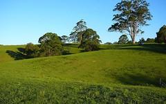 247 West Bulga Road, Elands NSW